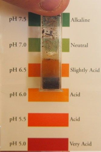 Soil PH Testing – How to