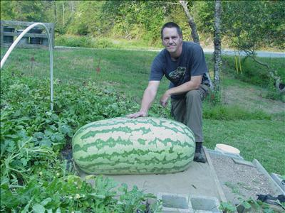 Chris Kent 350.5lb World Record Giant Watermelon
