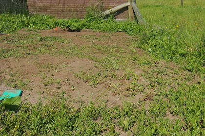 Removed a bulk of the weeds