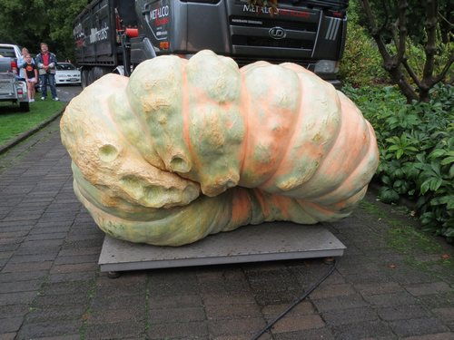 Great Pumpkin Carnival 201521