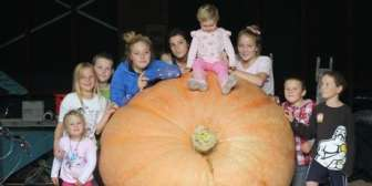 2011 record pumpkin, 440kg weighed in Taupo