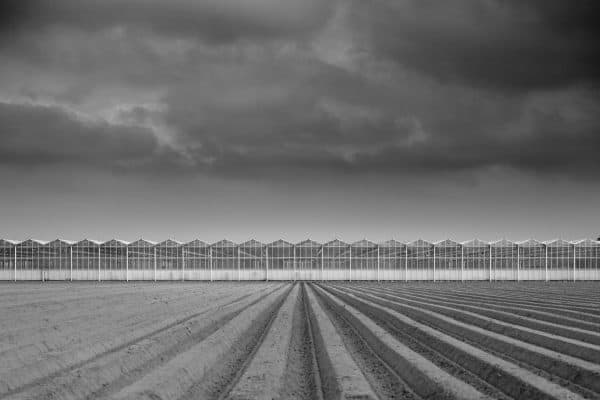 Giant greenhouse black and white