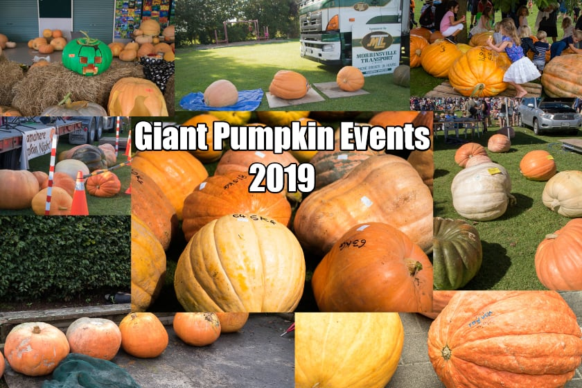Giant Pumpkin Events 2019 – The List