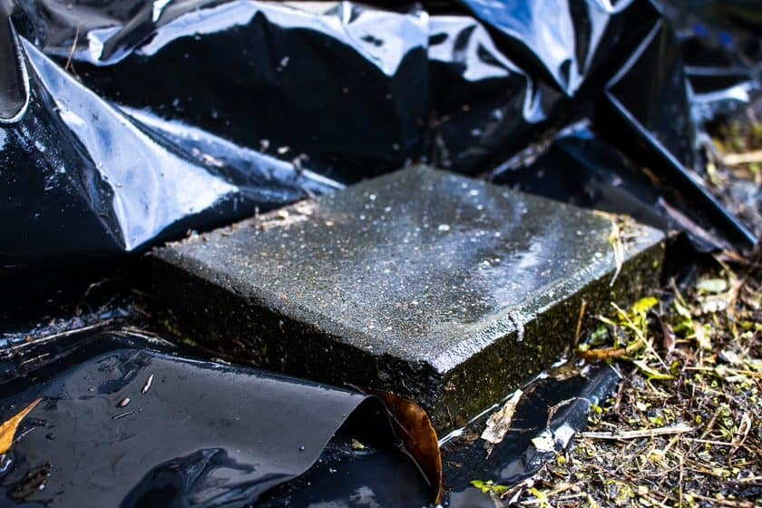 Paving stone weighing down edge of polythene