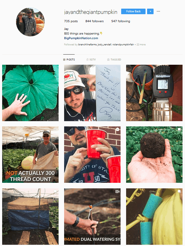 Jay and the Giant Pumpkin Instagram Profile