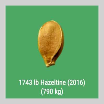 1743 Hazeltine 2016