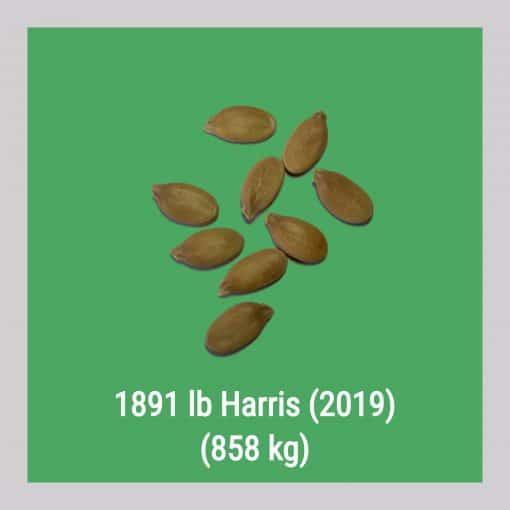 1891 Harris 858