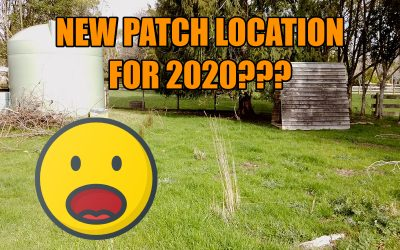 New Location for my 2020 Pumpkin Patch?