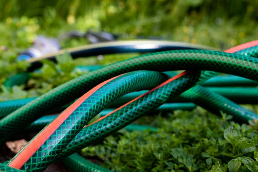 Garden hose on ground