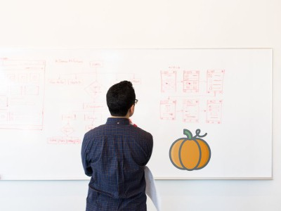 What to do in your Pumpkin Off Season