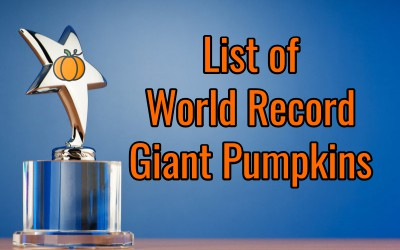 List of World Record Giant Pumpkins
