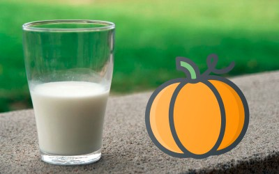 Giant Pumpkins and Milk