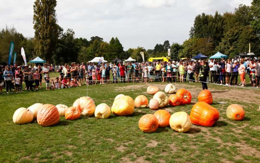 What I've Learned from Running a Giant Pumpkin Event