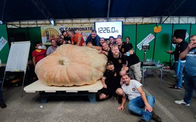 New Giant Pumpkin World Record Set in 2021